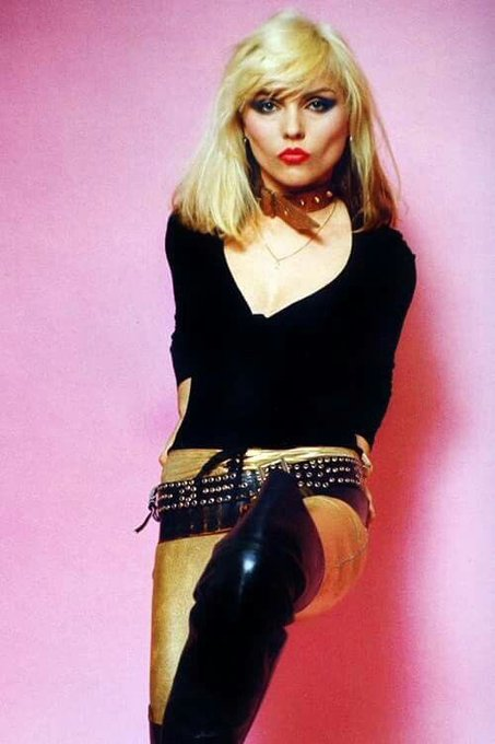 Daily Debbie Harry . happy birthday as well.