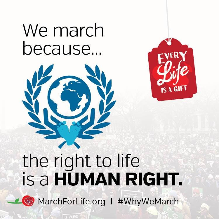 The right to life is a fundamental human right! #rallyforlife #whywemarch @theRallyforLife @YouthDefence https://t.co/BmwCqFatso