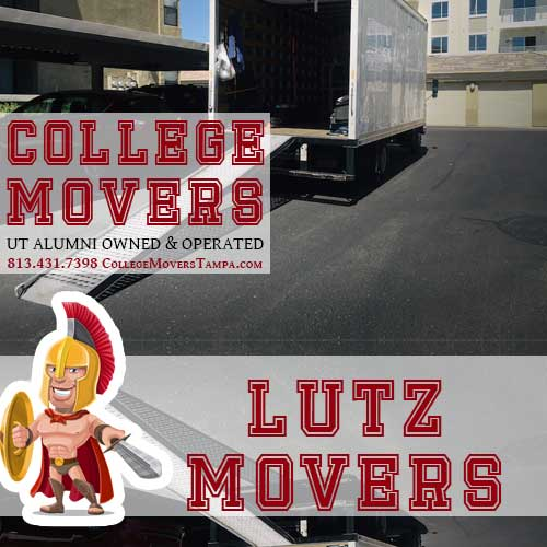 813 431 7398 Http Collegemoverstampa Movers Lutz Lutzmoverservices Moverservicez Lutzmovers Moverz Lutzmover Moverlutz