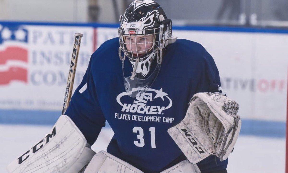 MN H.S.: Like Andover Goaltender Maddie Rooney In 2014-15, Rochester's Makayla Pahl Ready For Challenge Of Boys High School Hockey