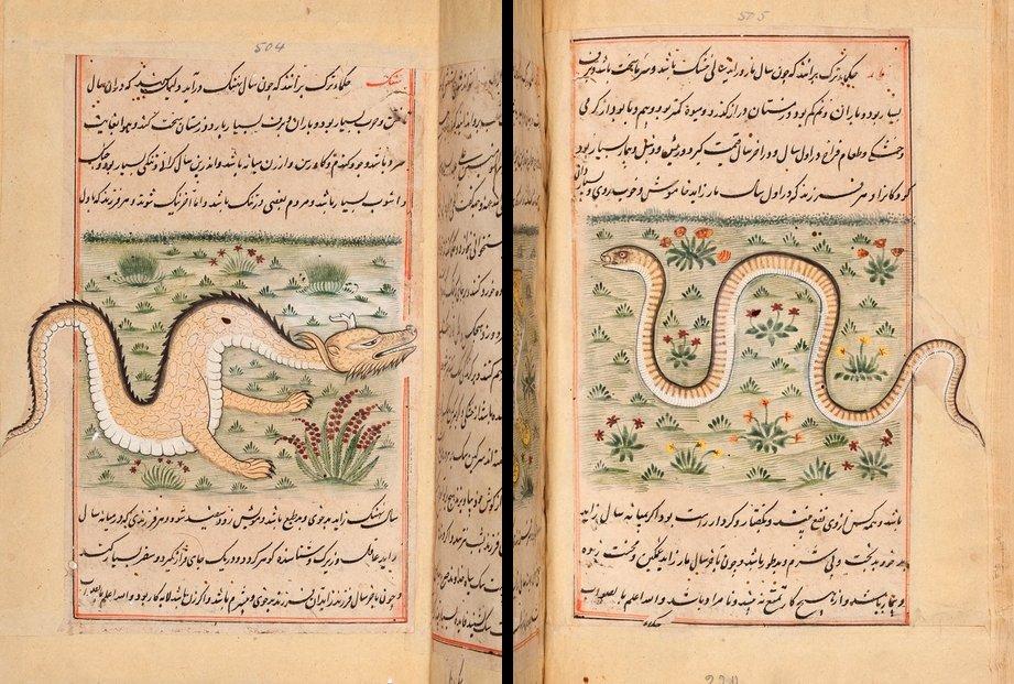 "17th-C. copy of Persian manuscript ""Faraḥ nāmah"" (Farah's Encyclopedia of Nature), a treatise on natural history: https://t.co/NIhQm55xNm https://t.co/qPNx2eh62M"