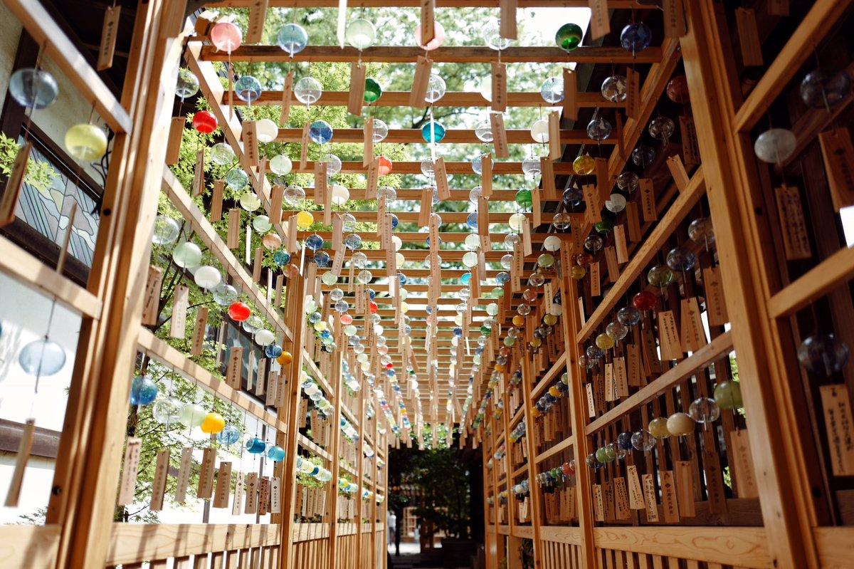 「そうだ 川越 いこう」  川越氷川神社で夏を感じてきました。  #風鈴