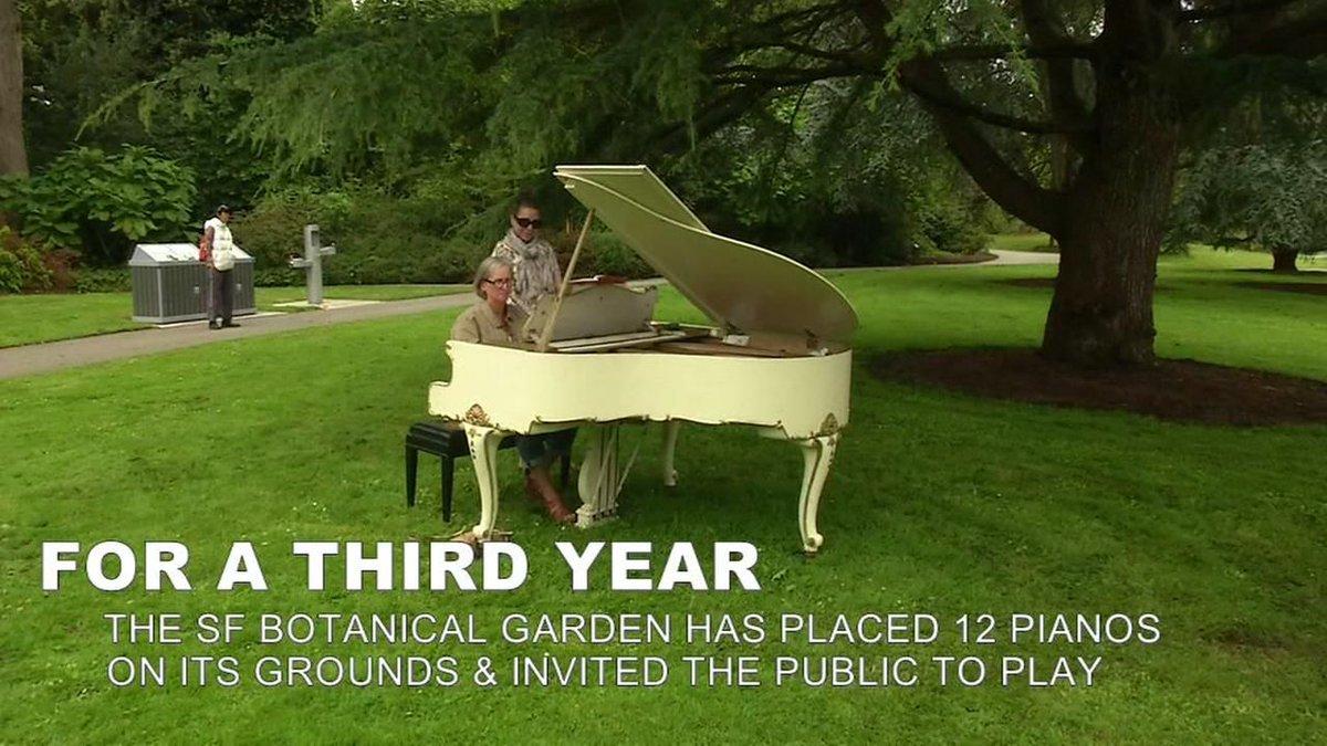 Flower Piano returns to San Francisco's Botanical Garden in Golden Gate Park -  https://t.co/292NKxiEj7 https://t.co/WoSL2xz4Sl