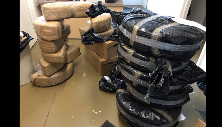 180 kilograms of weed found in new Ford Fusions shipped from Mexico