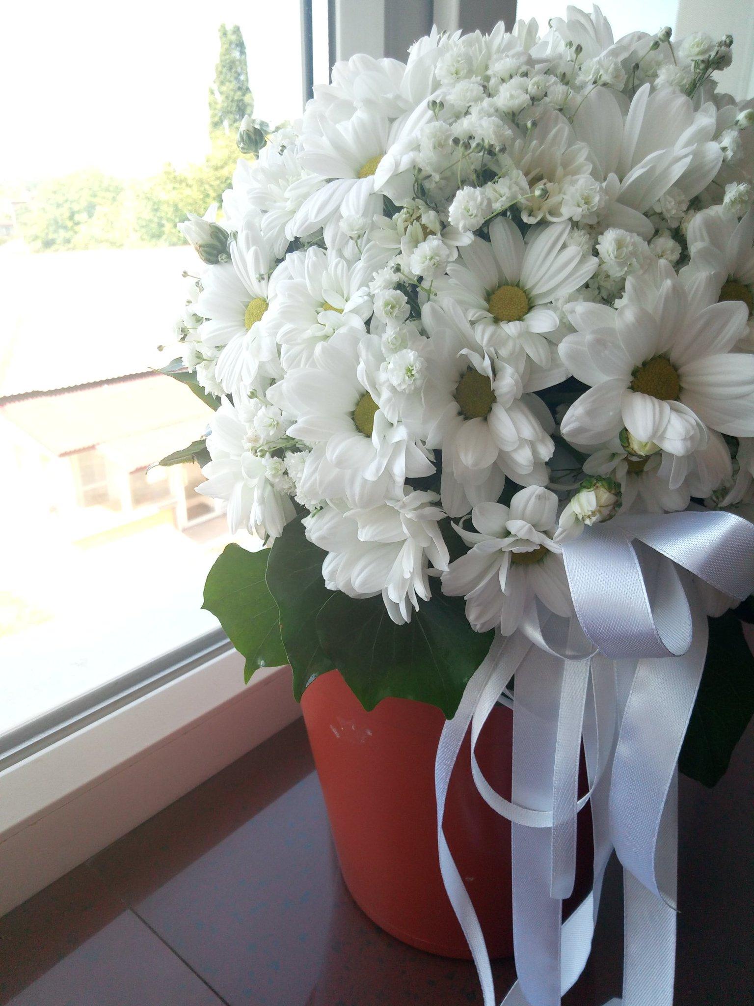 Луки цветы, букет для моей принцессы