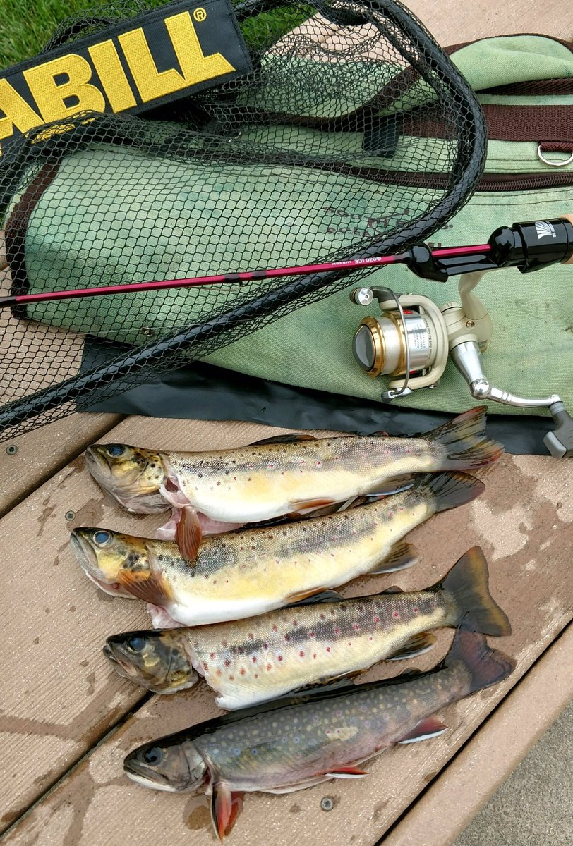 St  Croix Rods on Twitter: