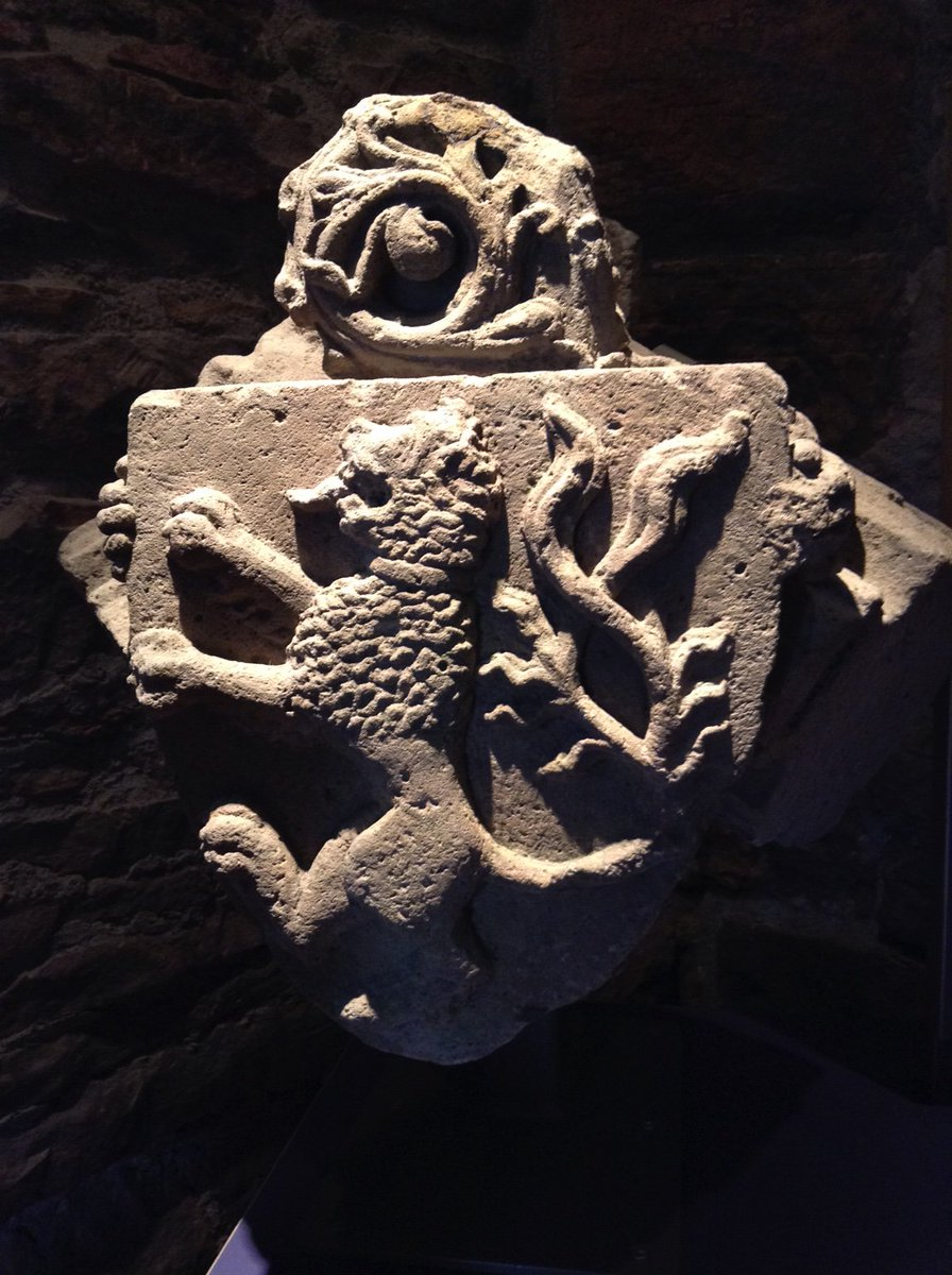 Stone heraldic lion on display at Elgin Cathedral, #Scotland, for #MewseumMonday.