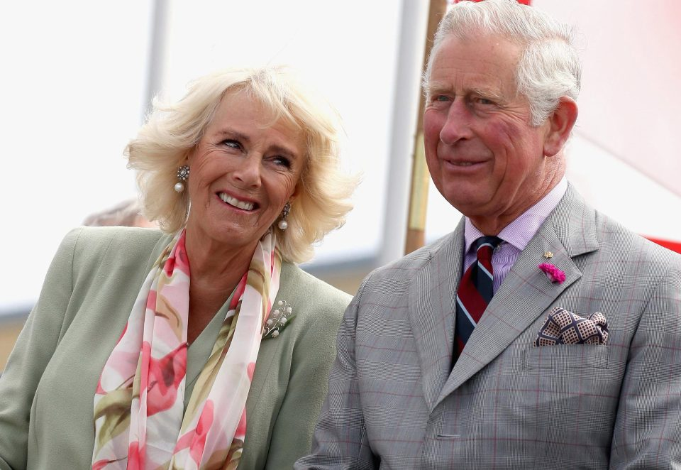 Happy birthday Camilla! The Duchess looks amazing in this portrait for her 70th