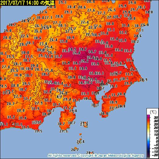 キレイな色してるだろ。ウソみたいだろ。梅雨明けの発表まだないんだぜ。東京初猛暑日で…。