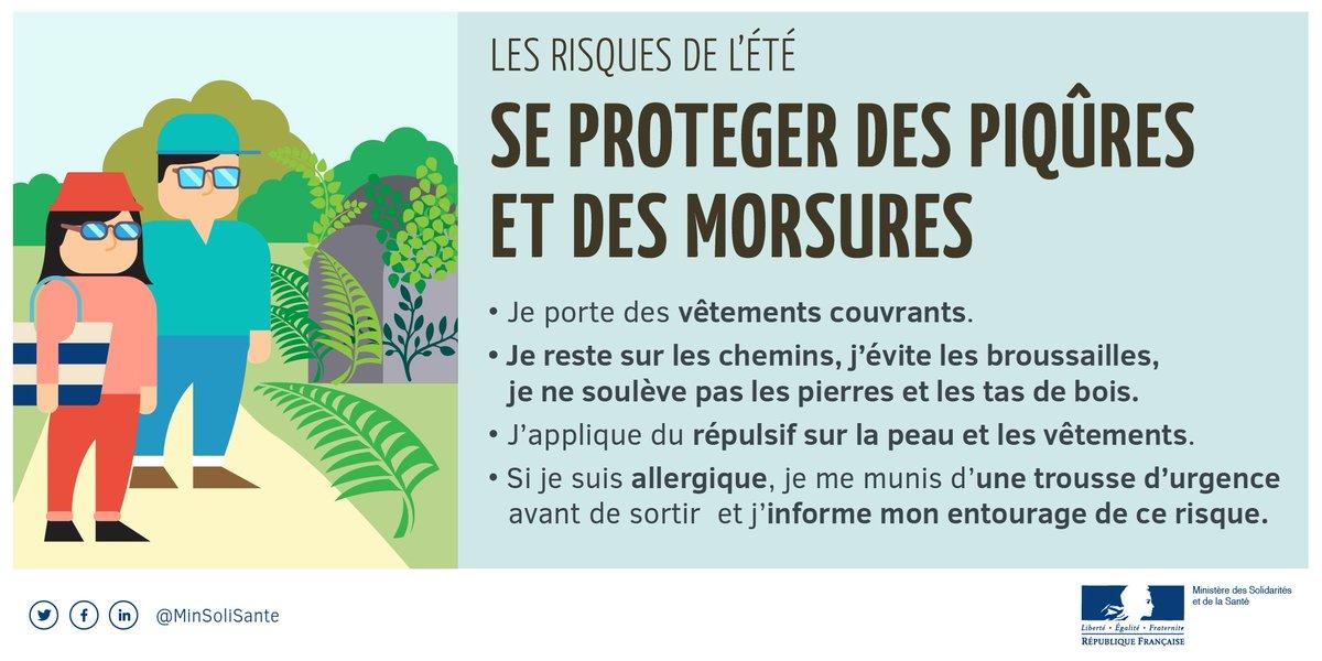 [#étésanssouci☀] Conseil n°1 : se protéger pendant les promenades (et dans son jardin)  ➡️ https://t.co/ms59kl71PT