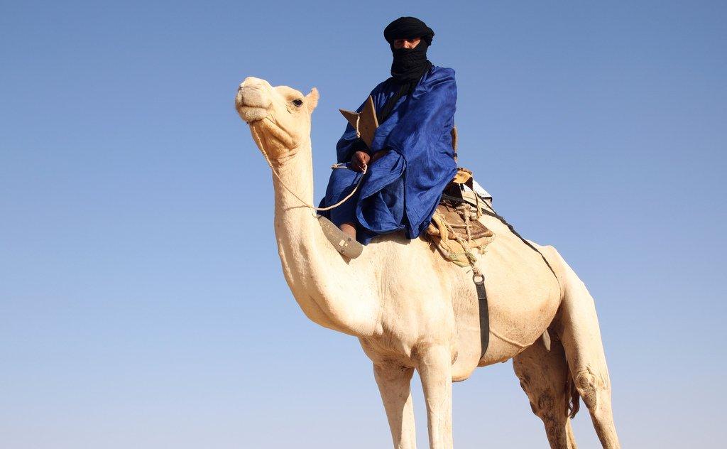 白い駱駝に乗って颯爽と現れる戦士、砂漠の青の民とも呼ばれるトゥアレグ族かっこよすぎ……と画像検索してた。藍の濃さで階級が決まるとか、遊牧もしなくなった今ではだいぶそういう慣習も薄れてきてるそうで、ローブの下はジーパン履いたりしてるんですね…そらそやな