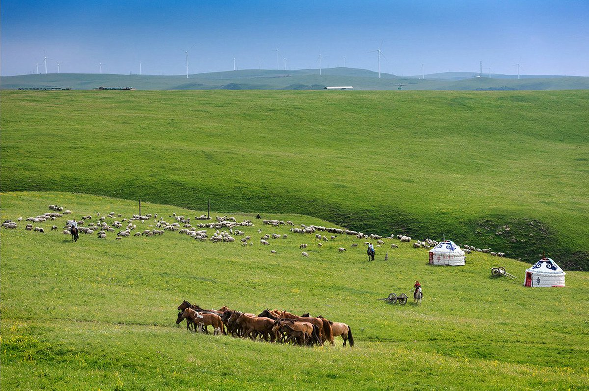 Our #MondayMotivation? The endless grasslands of Inner Mongolia, #China!