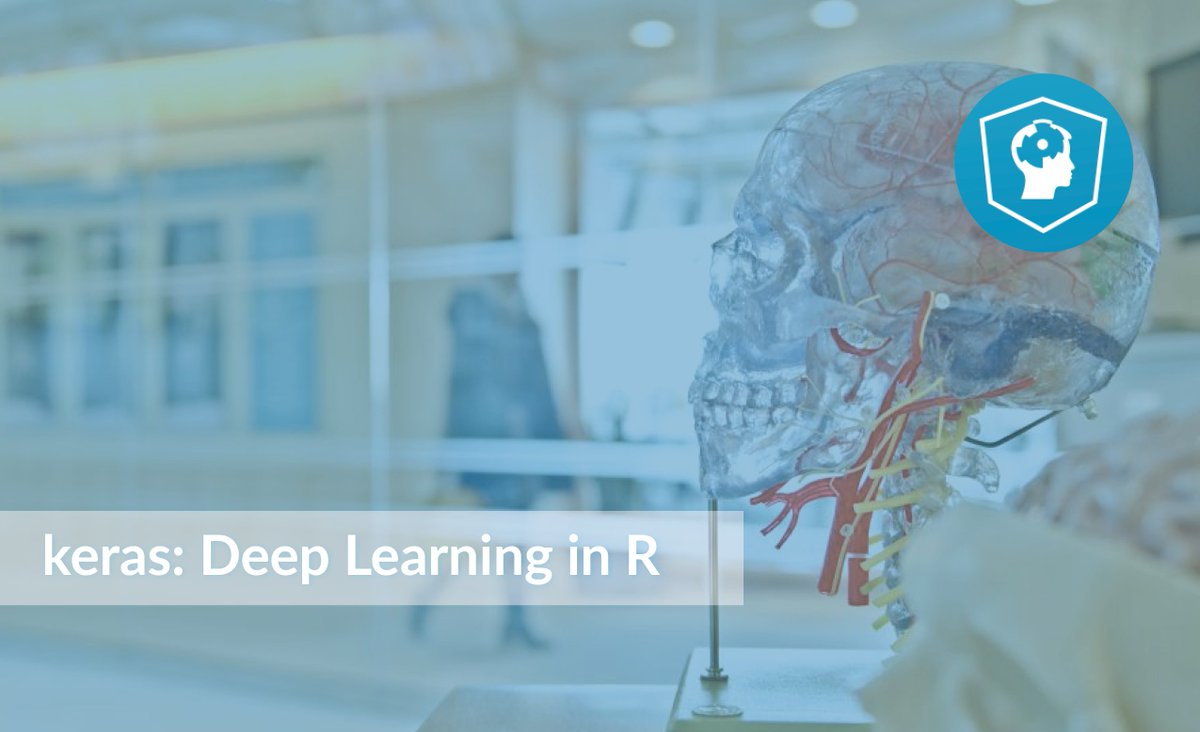 keras: Deep Learning in R (Article)