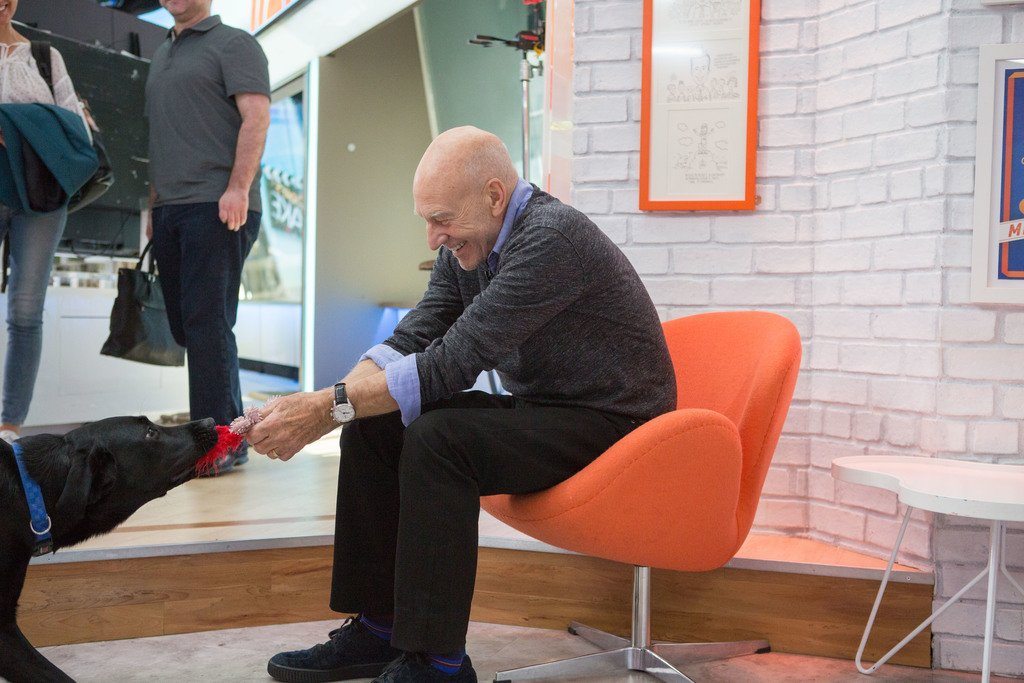Playing with @SirPatStew! #TODAYPuppy