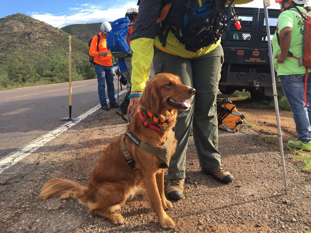 About 35 people, and many dogs, are searching for a person still missing in the floods in Payson. 9 people have died https://t.co/WxSIcCyV09