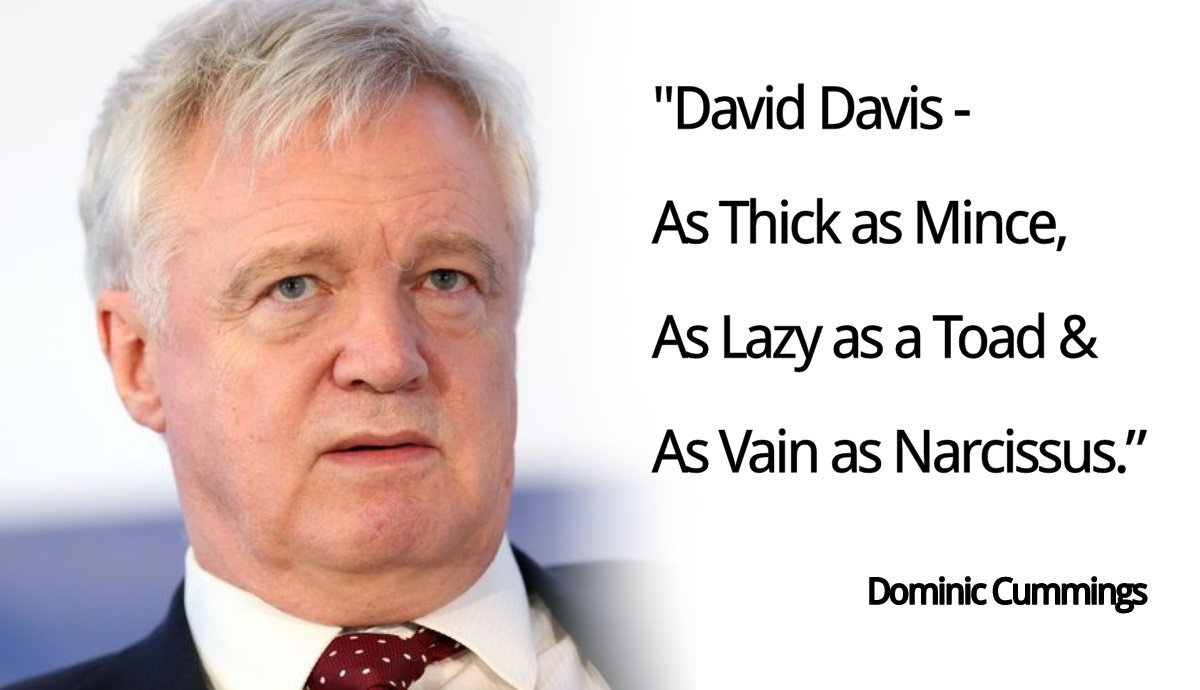 Image result for david davis lazy