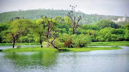 Image result for pashan lake