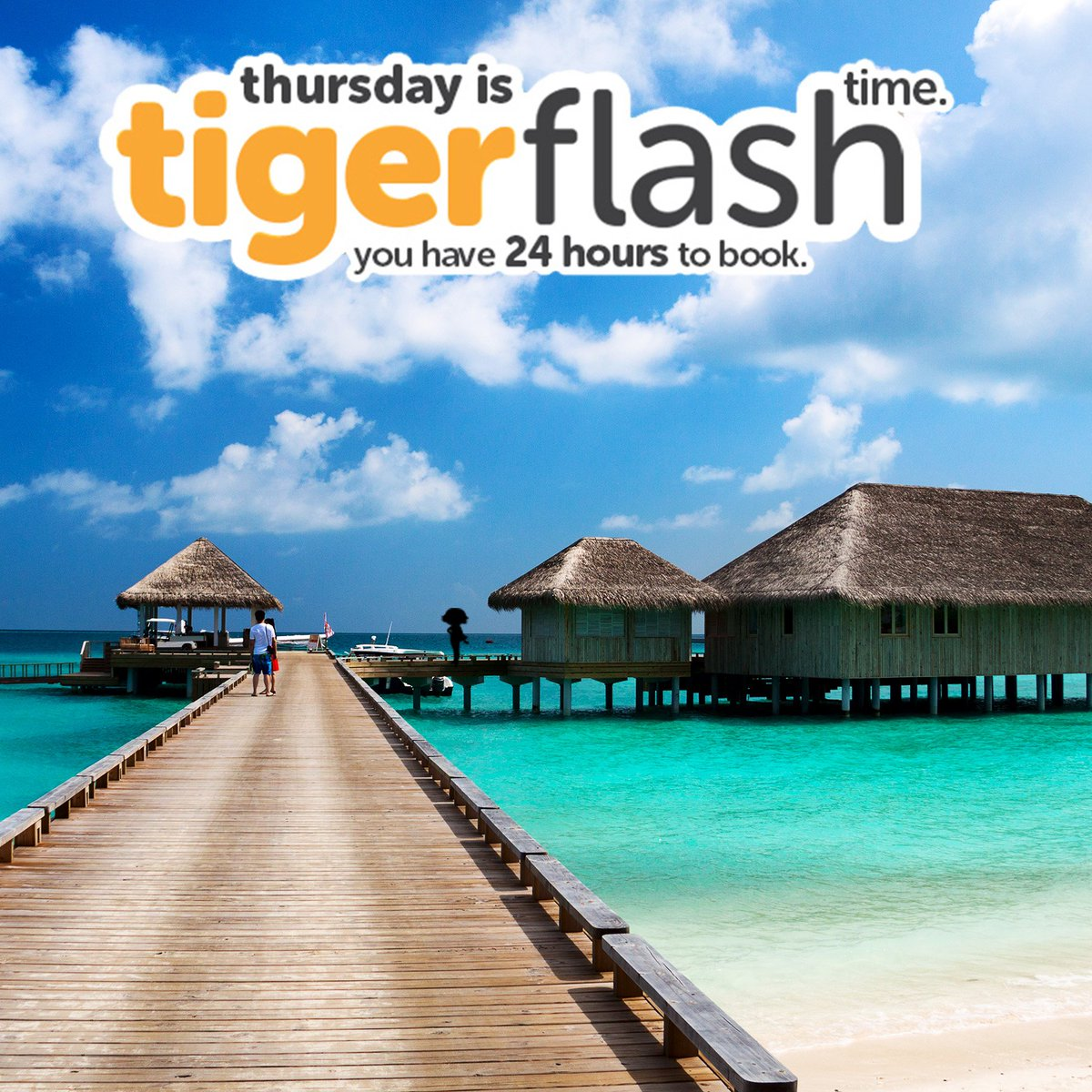 Travelling to paradise doesn't have to be a faraway dream. Fly with us to Maldives from $118* now! More #Tigerflash: https://t.co/YB6xoGOqRc https://t.co/WyUwMXwLdV