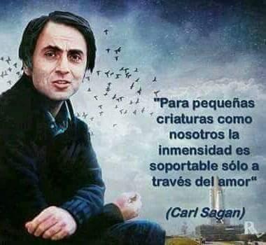 Carl Sagan Frases على تويتر Para Pequeñas Criaturas Como