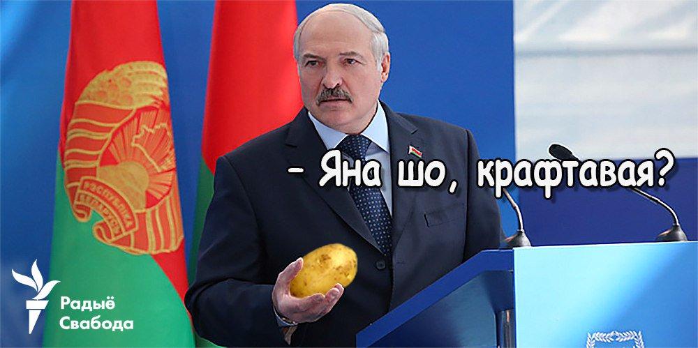 Янукович подал в ГПУ заявление о госперевороте, - адвокат - Цензор.НЕТ 9699