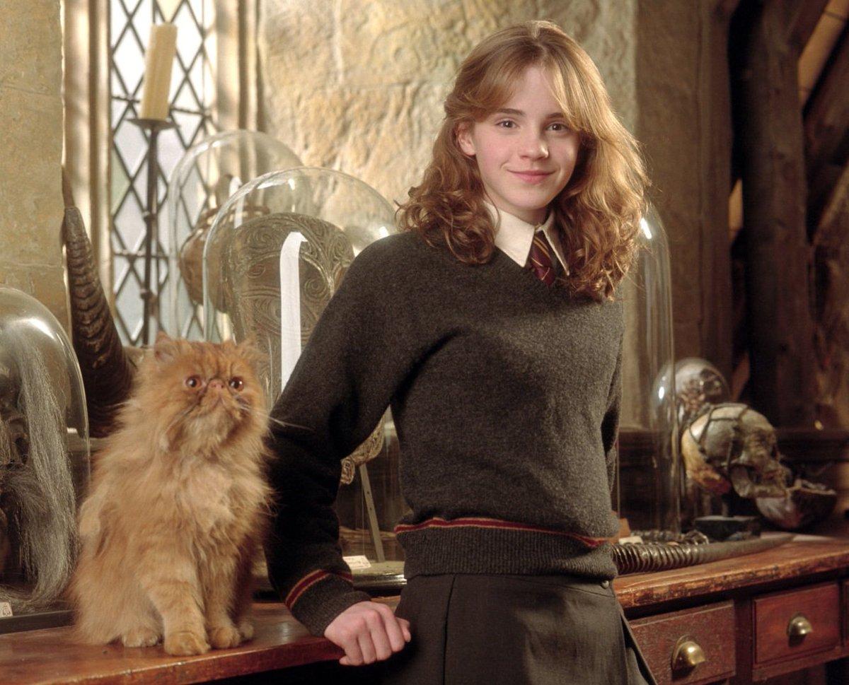 Pottermore on Twitter: