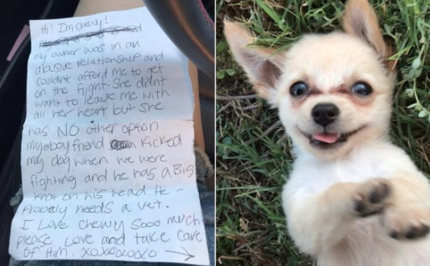 Puppy abandoned in Las Vegas airport with gut-wrenching note https://t.co/K0Ri7PdoEC