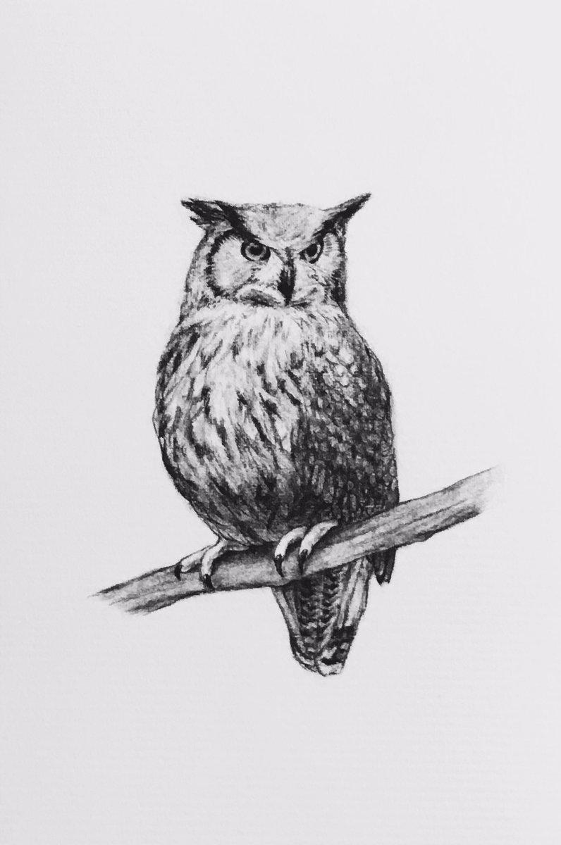 """佐俣 水緒 on twitter: """"フクロウのメディスンは「心の目を開く"""