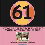 Thank you to all of the owners of the 61 mares that were bred to Curlin To Mischief this season!
