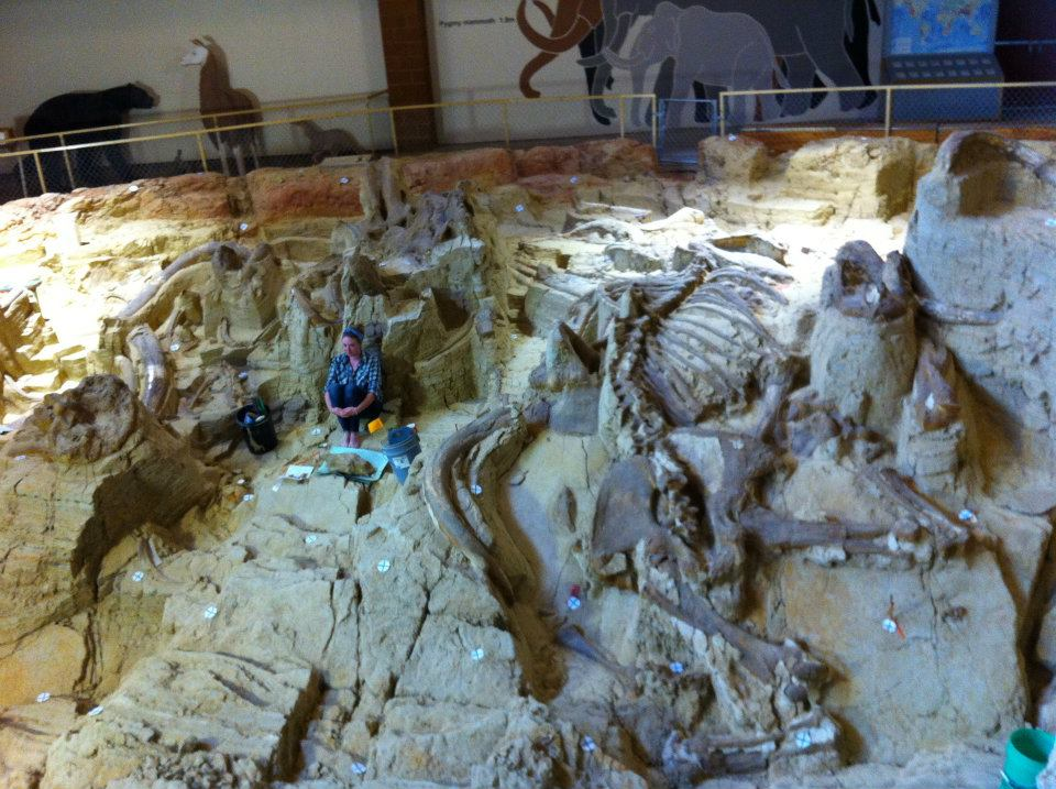 #FossilFriday Summer 2012 at @MammothSite next to a nearly complete #mammoth ⌛️to #VTTriassicFieldwork with @VTechmeetsPaleo 7 DAYS! https://t.co/K5dogDv6s2