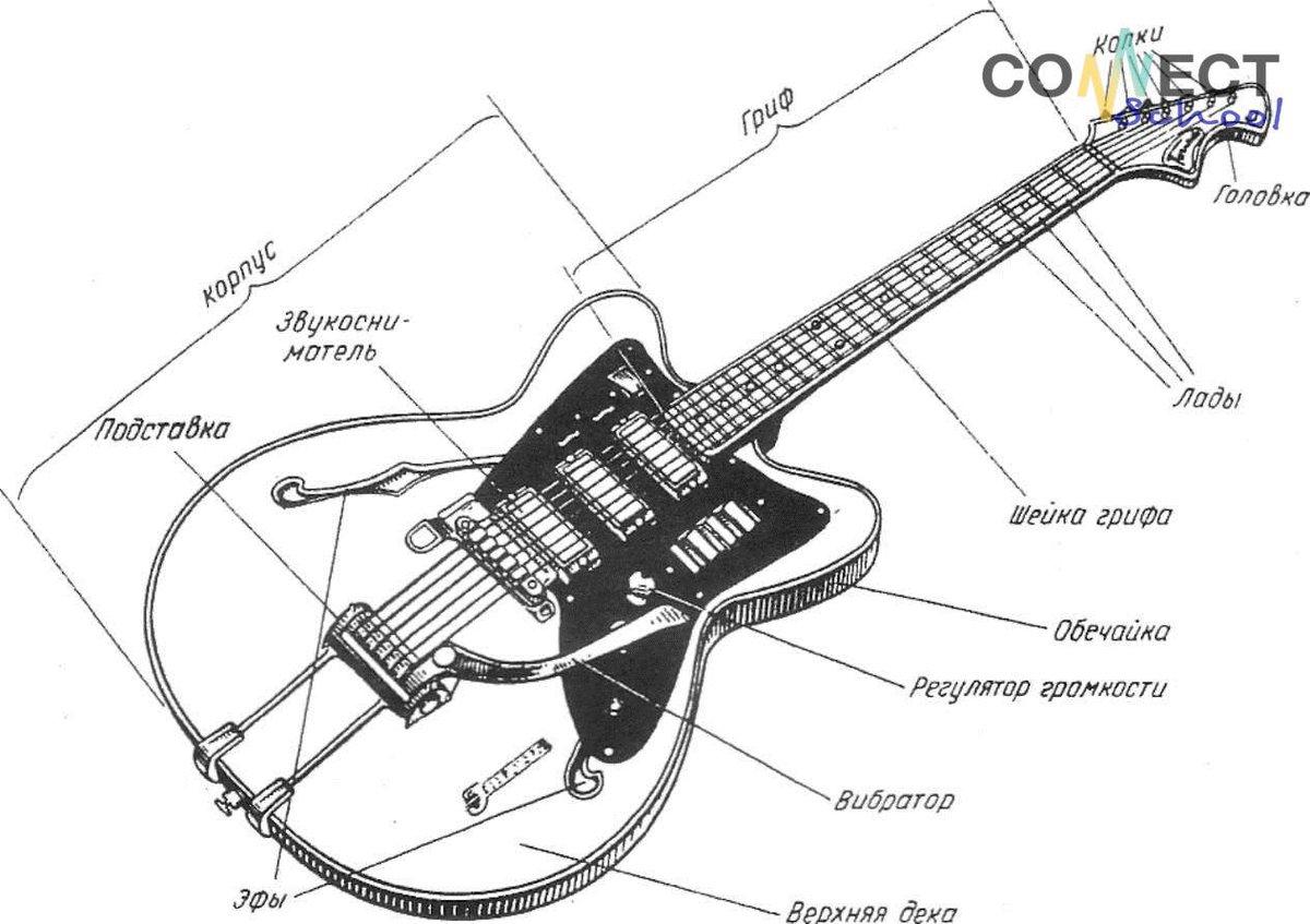 схема строения гитары виду выглядел