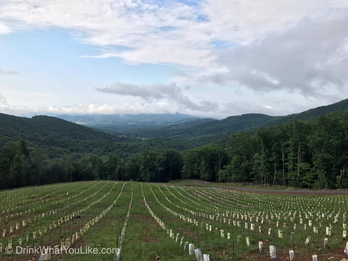 Wine travelers, this site is a *must visit* next trip to @VisitVirginia  https://t.co/zxkcAovsmK https://t.co/fNQP05xuNJ