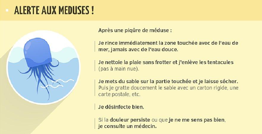 [#étésanssouci ☀]Conseil n°5 : que faire après une piqûre de méduse ?  ➡️ https://t.co/y3reo0NtW4