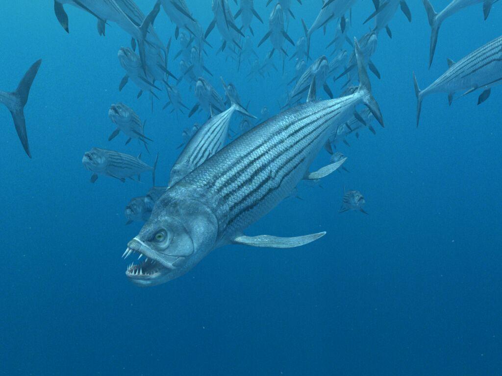 xiphactinus fish - HD1024×768