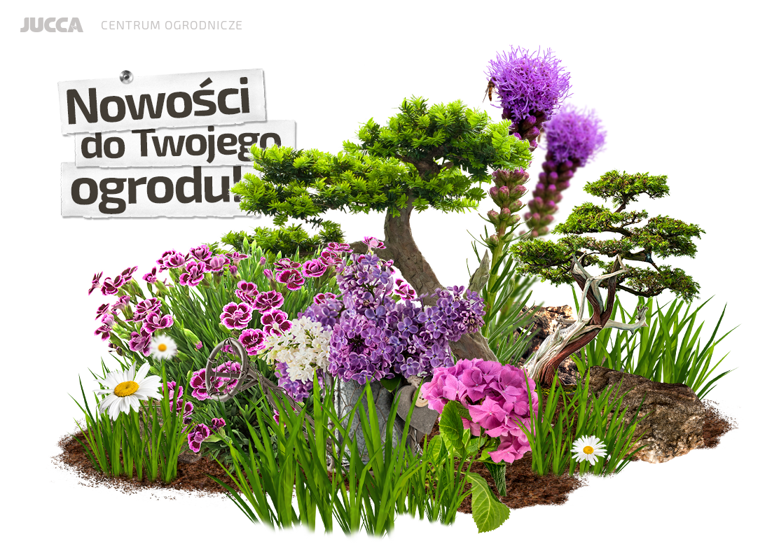 Jucca On Twitter Jucca Centrumogrodnicze Kwiaty Ogród