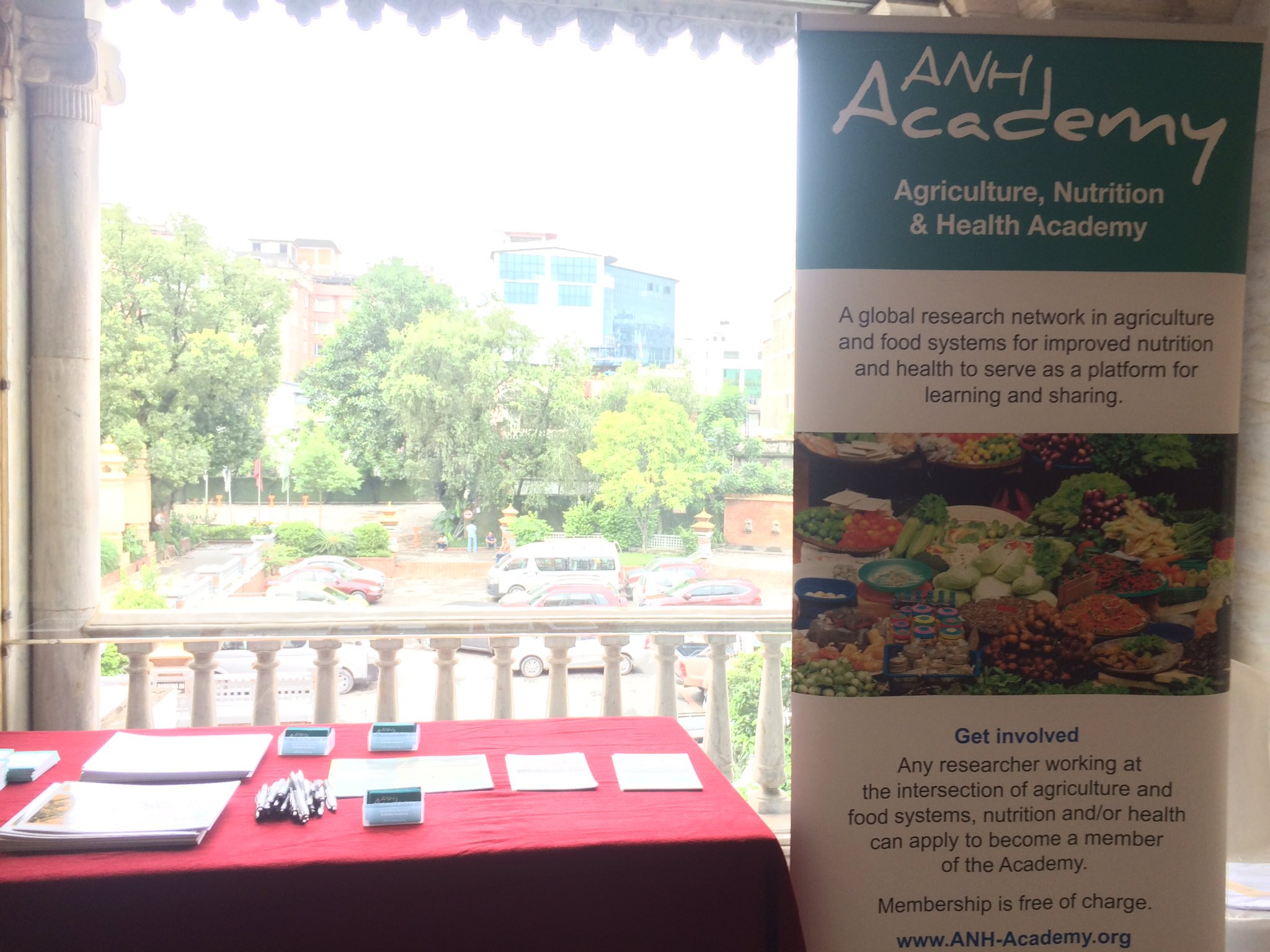 Visit our booth at #ANH2017 #agnutsympo to find out what we do & join #ANHAcademy for free! https://t.co/vNjsJn46gZ