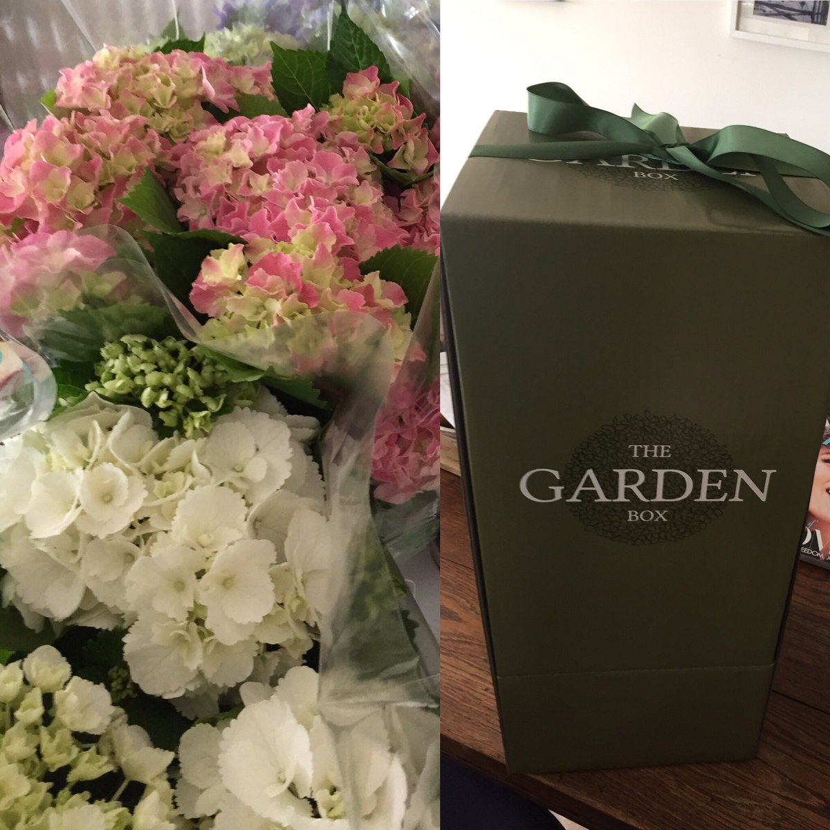 The Garden Box (@TheGardenBox1) | Twitter