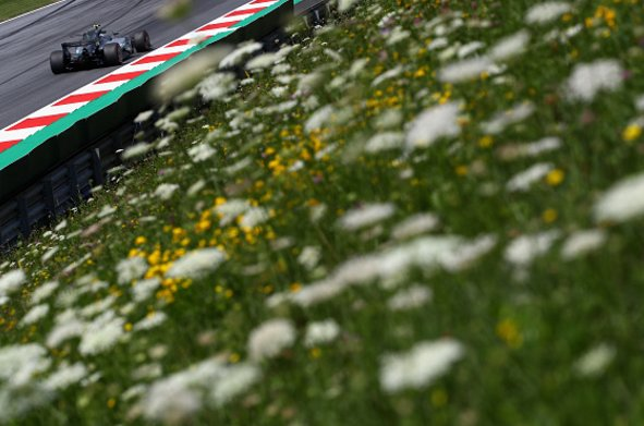 Bbcf1 on twitter edelweiss edelweiss every morning you greet bbcf1 on twitter edelweiss edelweiss every morning you greet me small and white clean and bright you look happy to meet me m4hsunfo