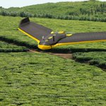 Join our Community of Practice focusing on the use of #drones in #agriculture in #developing #countries https://t.co/J2zoipQVzw  #UAV #sUAS