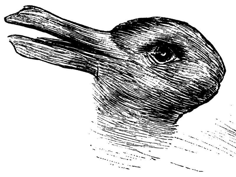 有名な「ウサギとアヒルのだまし絵」そっくりの生き物が現実にいた labaq.com/archives/51885…  だまし絵のように混乱してしまう