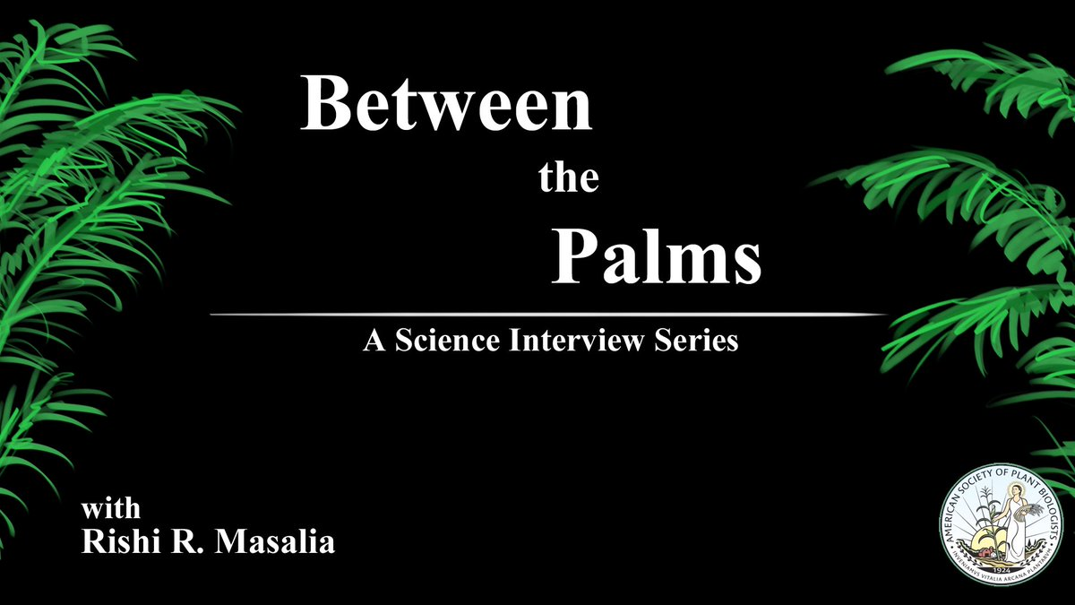 Title card for the #betweenthepalms interview series! First episode will drop soon! @ASPB #plantbio17 <br>http://pic.twitter.com/ZHfrXXgXW3
