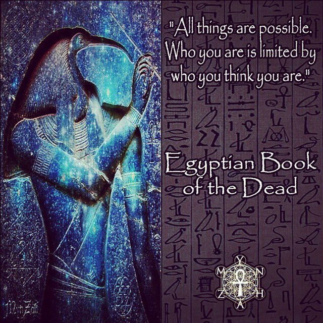 egyptianquotes hashtag on Twitter