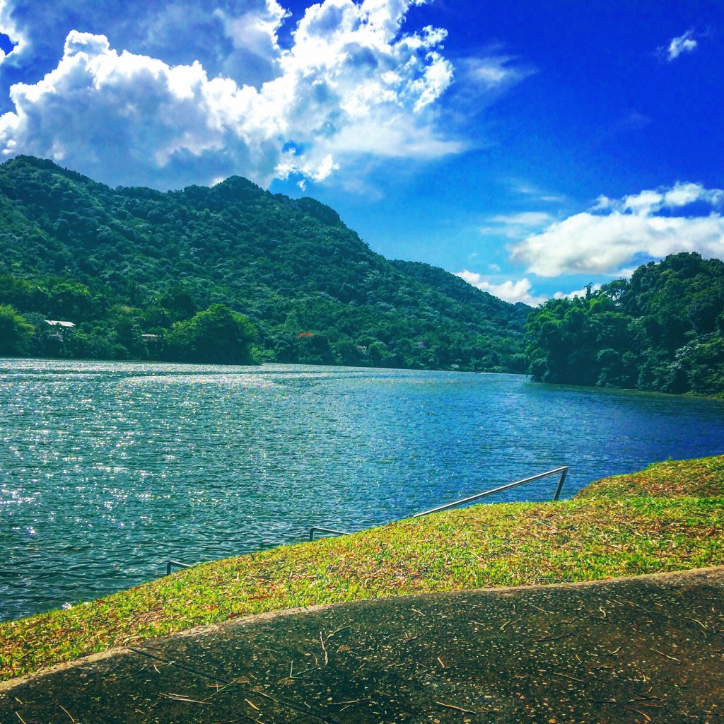 #NewProfilePic  Restaurante El Otoao, Lago Dos Bocas, Utuado, PR https://t.co/sexNO2BAZm