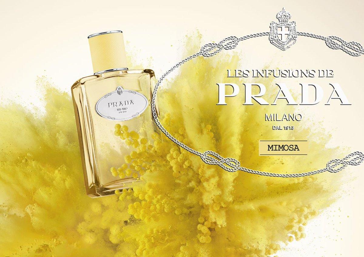 51431fc8 Givaudan Perfume on Twitter: