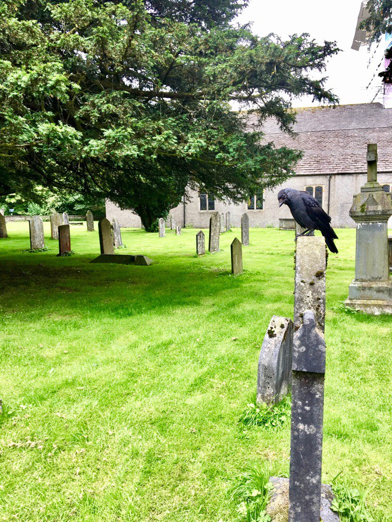 My wife took this graveyard photo and immediately turned so goth she started a Siouxsie and the Banshees cover band.