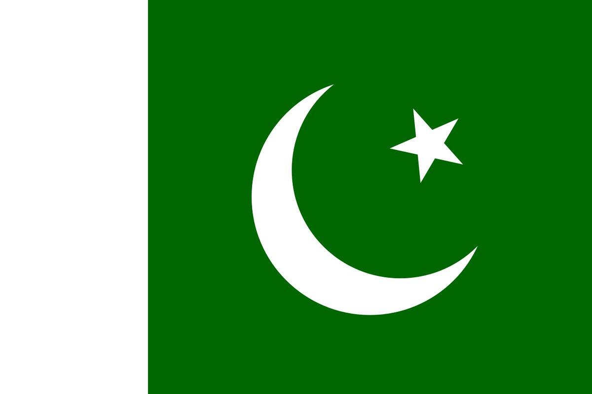 Face Painting Online Pakistan Flag