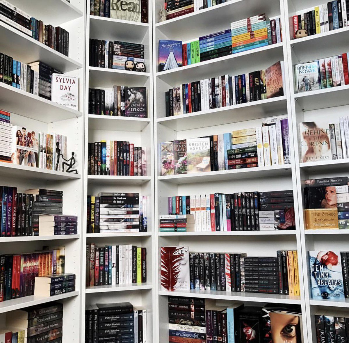 Dream Book Shell, what dream Shelp in a dream to see 13