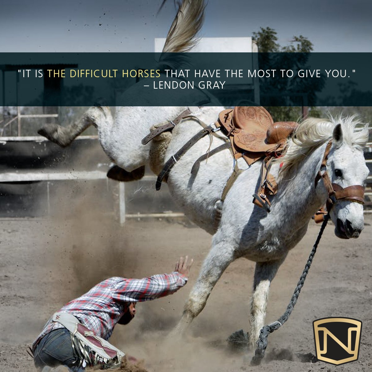 Noble Equestrian Usa On Twitter It S The Difficult Horses That Teach Us The Most Do You Agree Nobleoutfitters Quotes Horses Inspirationalquotes Equestrian Rodeo Https T Co Pf9y2yi7zh