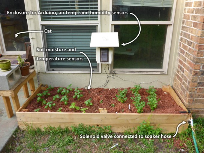 Build a smart garden with these 3 DIY Arduino projects