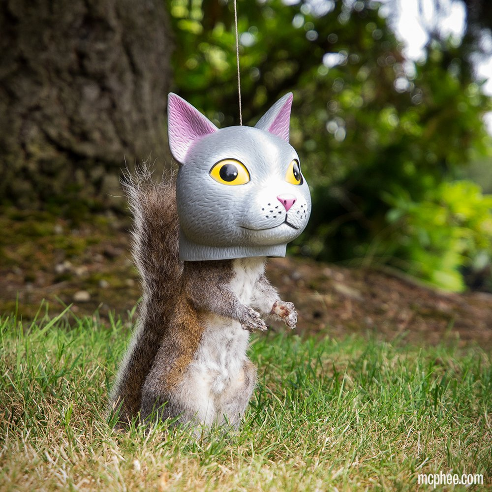 Our new Cat Head Squirrel Feeder humiliates squirrels, amuses watching cats! https://t.co/b2slltuHng https://t.co/8aGw96sp4e
