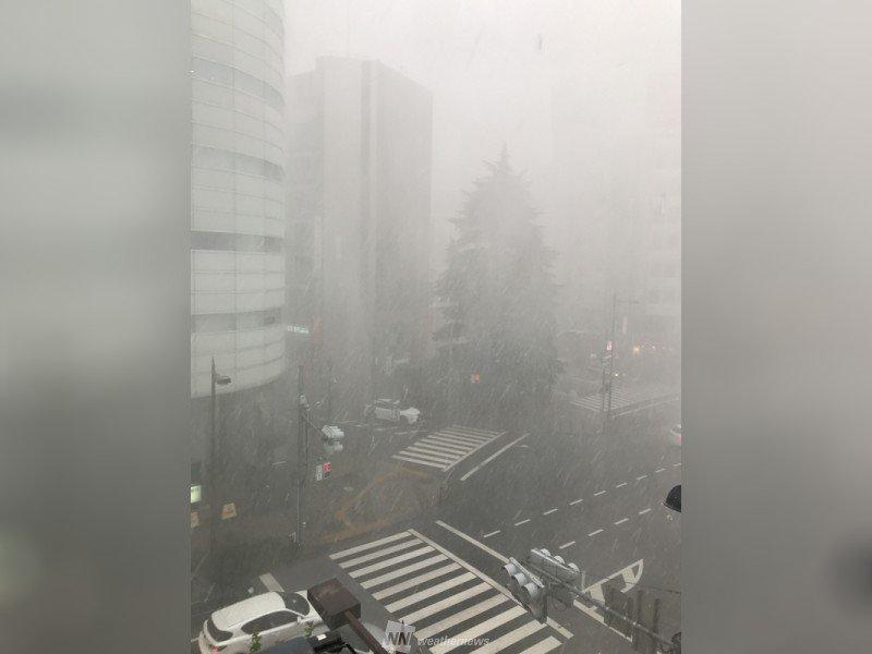 【東京豊島区の雹】まるで吹雪のような様子や積もっている様子など相次いで投稿が届いています。 weathernews.jp/s/topics/20170…